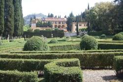 Villa_schifanoia