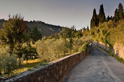 surroundings of fiesole by visititaly