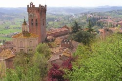 Surroundings of Pisa in summer san miniato