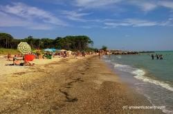Free Mazzanta beach (2)