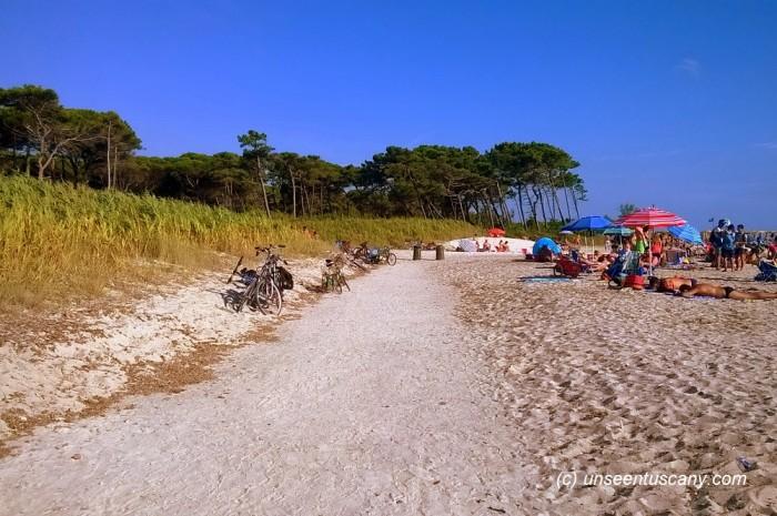 Free Mazzanta beach (4)