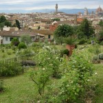 Things to do in Florence Roses