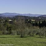 Florentine hills