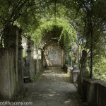 Secret passages of Bardini garden