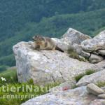 Trekking Tuscany Abetone