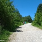Trekking near Florence at Monte Morello