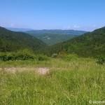Trekking near Florence at Monte Morello