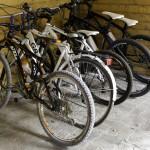 Hotel Airone Bike Hotel