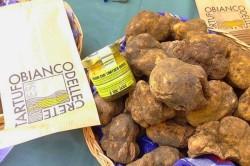 white truffles tuscany